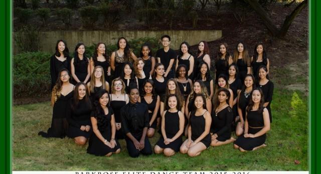 2015-16 Dance Team