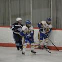 FHS Hockey, Winter 2015-2016