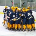 Hudsonville Hockey Vs. Portage 1/16/16
