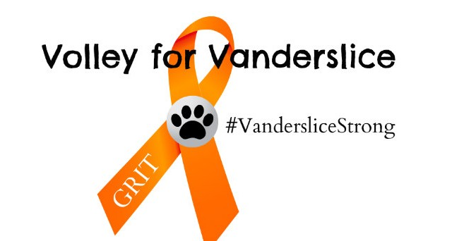 Volley for Vanderslice