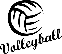 Volleyball Wins Conference Opener 3-0