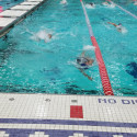 Swimmers push hard to win