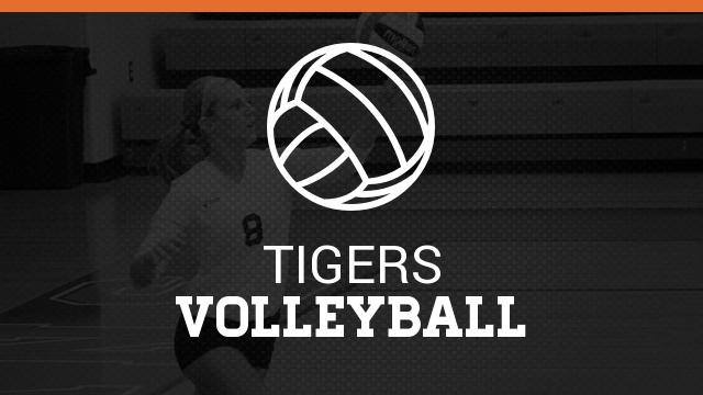 Volleyball Update: May 19th