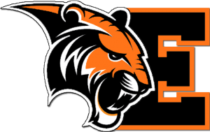 black_E_large_tiger_orange.fw