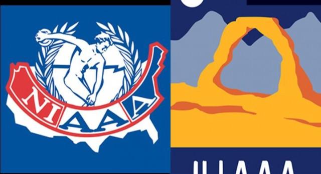 NIAAA and UIAAA Scholarship