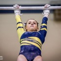 Gymnastics at East Lansing Invitational