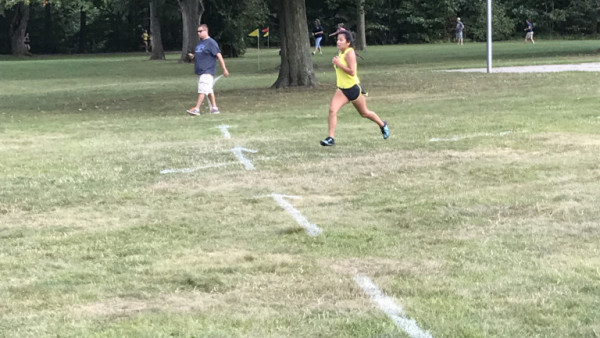 Cross Country - Fitzgerald Park