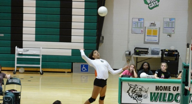 Wildcat Volleyball Set to Play for the State Championship