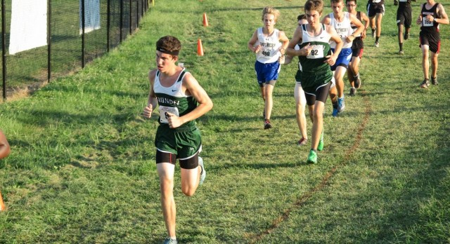 Wildcat Runners Excel at State Championship Meet