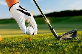 Valley Christian High School Boys Varsity Golf beat Whitney High School 231-238