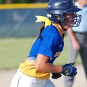Varsity Softball vs Dow 5-23-16