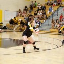 Volleyball Action Shots 2015