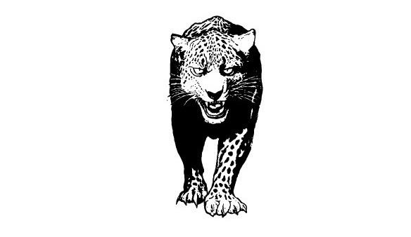 lovejoy_leopard