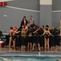 Lovejoy Swim & Dive sweep Cougar Classic