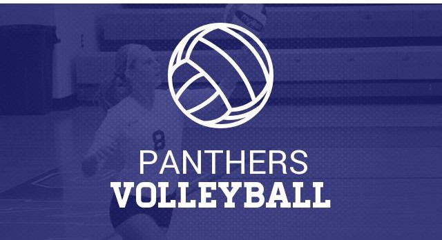 Volleyball Girls Receive Academic All-State Honors