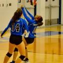 Volleyball Varsity vs. Lamar 10-07-16