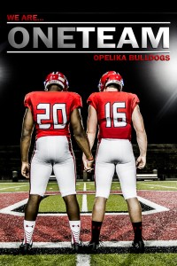 We Are One Team poster 2016