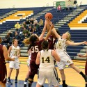 PC Girls Varsity Falls to Kalamazoo Central, 48-24, in Districts (Feb. 24, 2014)