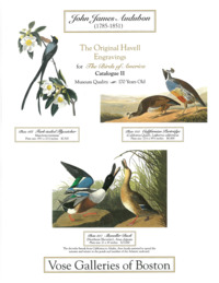 Audubon   engravings catalogue cover