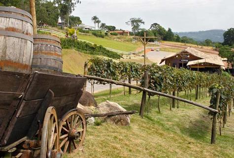 0901-turismo-rural-roteiro-do-vinho