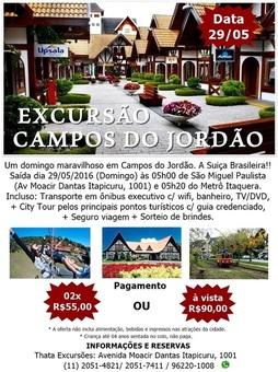 Campos1