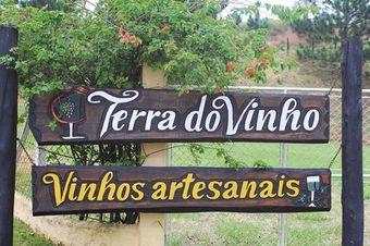 Vinicola_terra_dos_vinhos_i