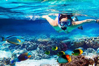 Mergulho-em-ilha-grande-pousada-refugio-do-capitao-rj
