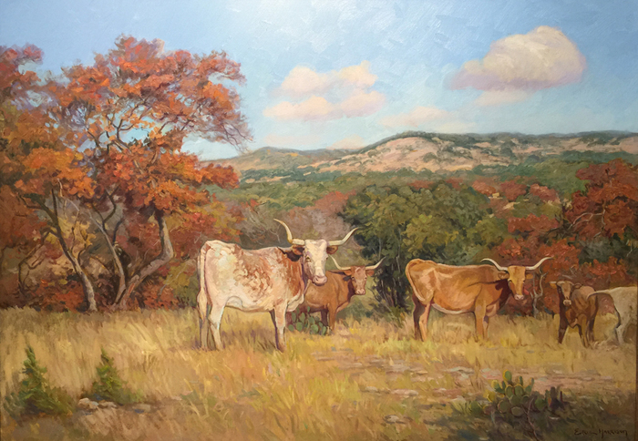 """Longhorns and Spanish Oaks"""