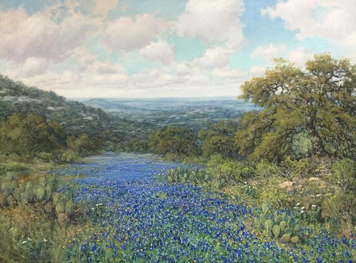 """Bluebonnets in the Hill Country"""