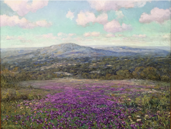 """""""Hill Country Verbena's"""""""