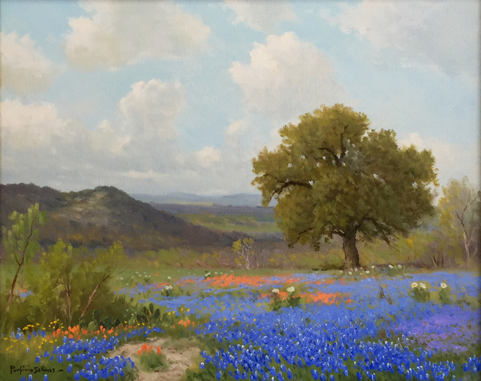 Bluebonnet & Paintbrush