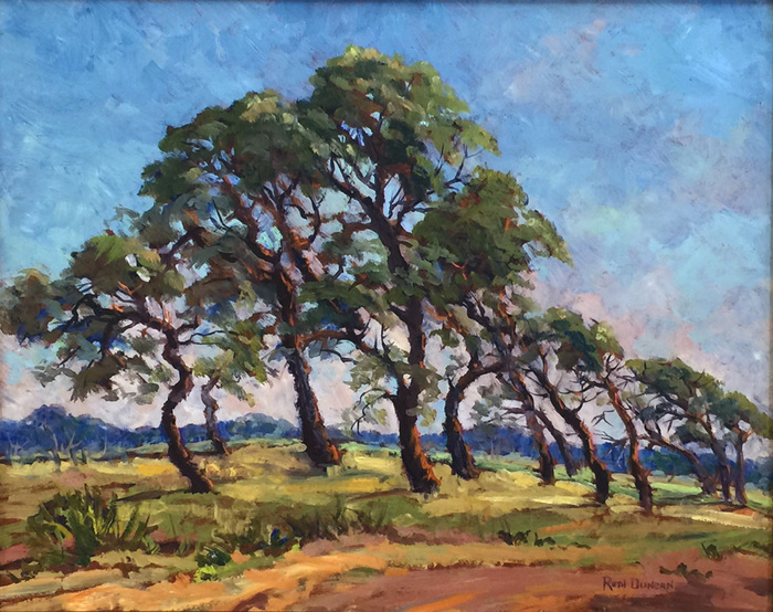 """Leaning Oaks on a Summer Day Rockport Texas"""