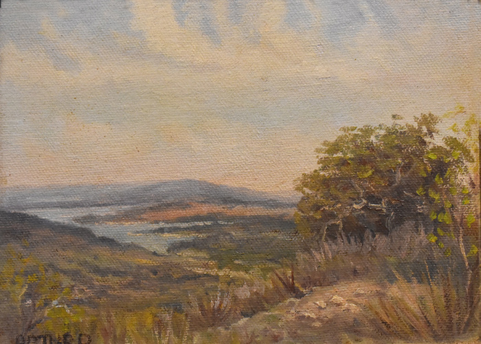 """Lake in the Texas Hill Country"""