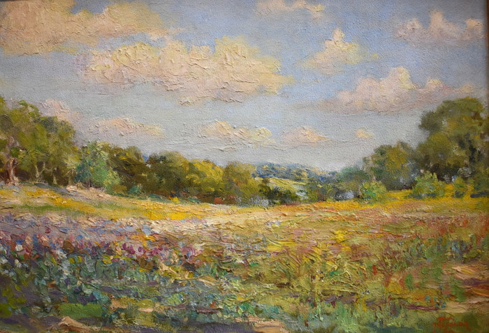 """""""Texas Spring""""  Hill Country"""