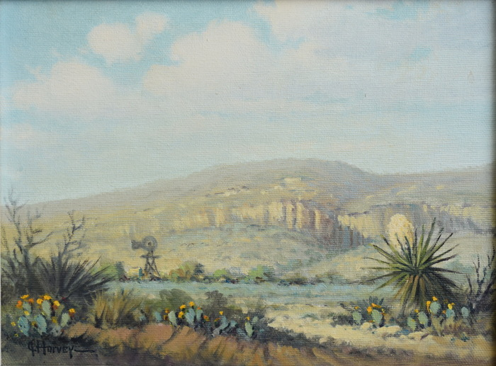 """Spring in Davis Mt""  Blooming Cactus"
