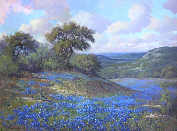 Bluebonnet Serenade