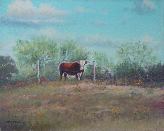 Texas Landscape With Hereford
