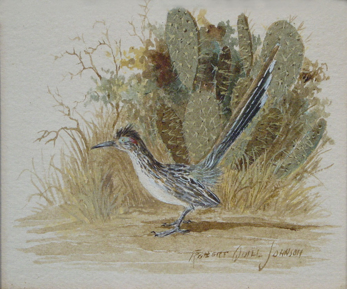 Roadrunner in Prickly Pear Cactus