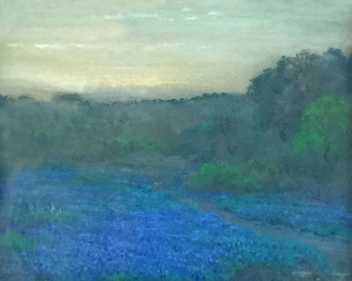 Bluebonnets at Twilight North of San Antonio -Texas-