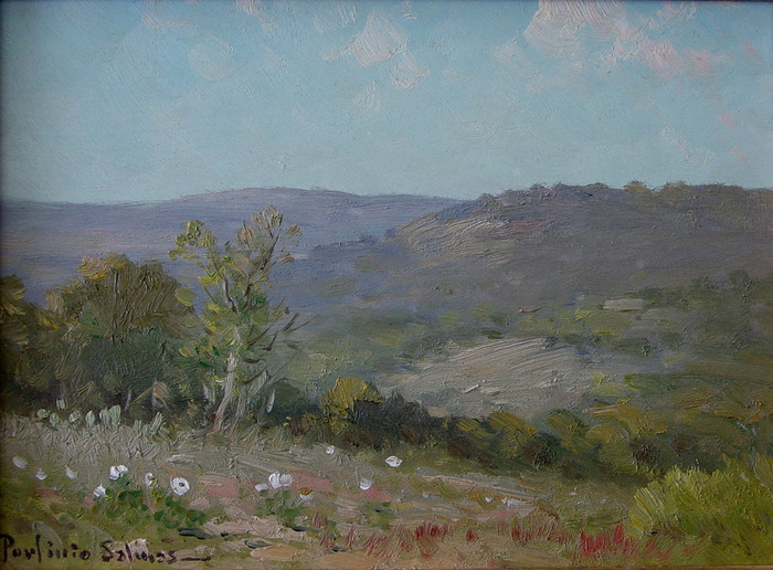 Hill Country Landscape with Poppies