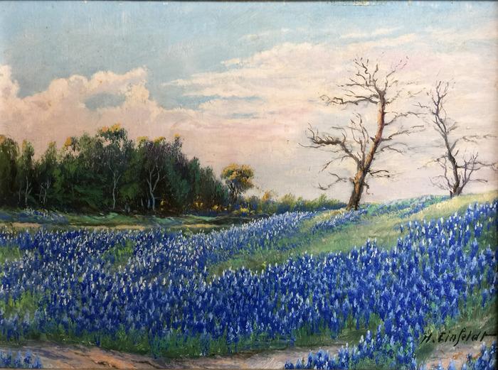 Landscape Bluebonnets