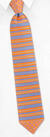 Orange Tie - Striped Floral By Daniel Dolce Orange Silk Ties