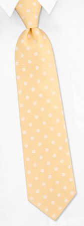 Petaluma Polkadot Tie by Jacob Alexander - Yellow Polyester