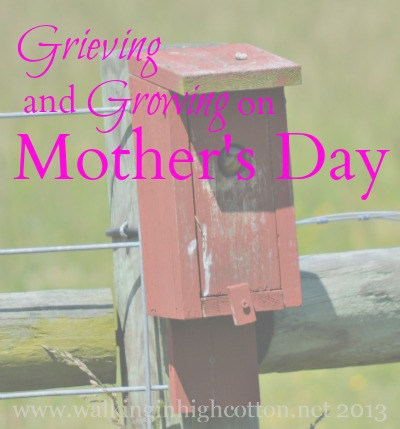 Grieving and growing on Mother's Day {via www.walkinginhighcotton.net}