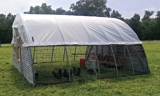 chicken hoop house 06