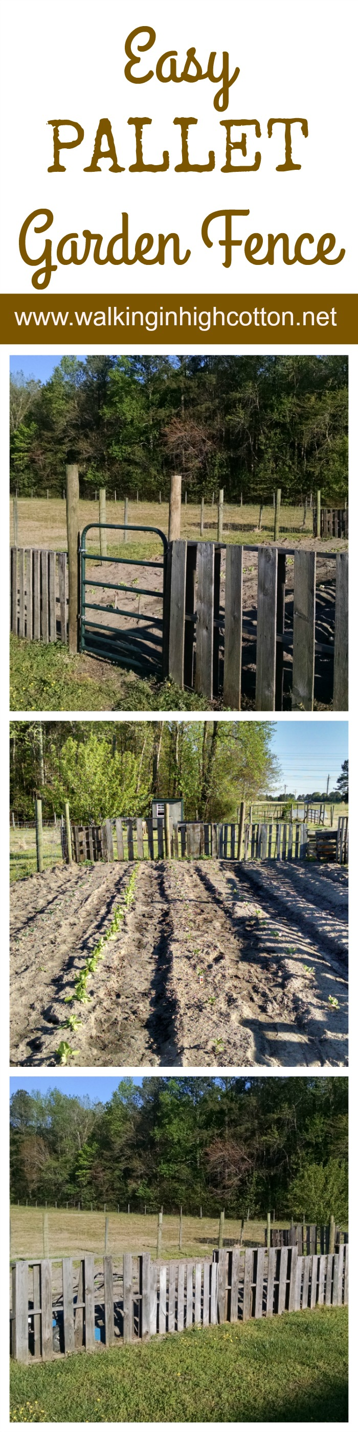 Building an easy, one-day garden fence out of pallets and wire. (at www.walkinginhighcotton.net)