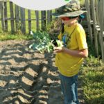 Letting Kids Be Involved in Every Step of Gardening
