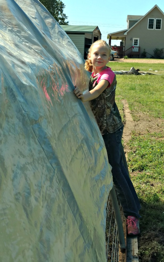 chicken hoop house cover