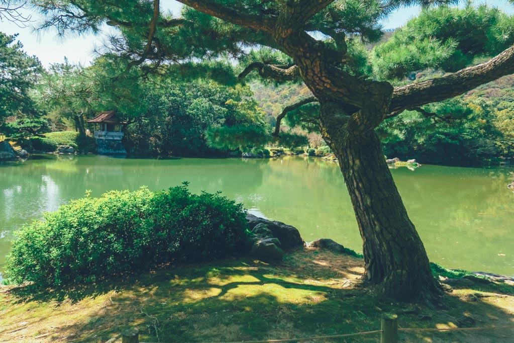 wanderlife, japan, japan tourism, travel, travel blog, gardens ritsurinkoen, takamatsu city, kagawa prefecture. (1 of 19)