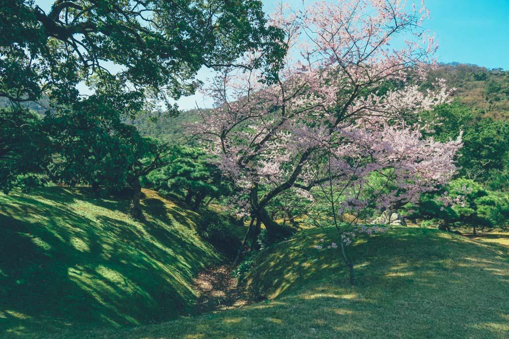 wanderlife, japan, japan tourism, travel, travel blog, gardens ritsurinkoen, takamatsu city, kagawa prefecture. (12 of 19)